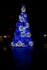 Grüne Weihnachtsbäume hat jeder
