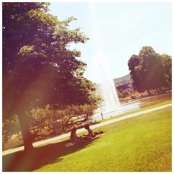 Sommer in Stuttgart<br>